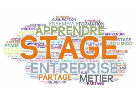 Que doit contenir l'introduction d'un rapport de stage ?