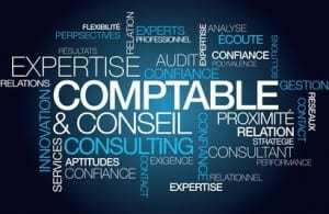 Expertise comptable conseil expert consulting nuage de mots